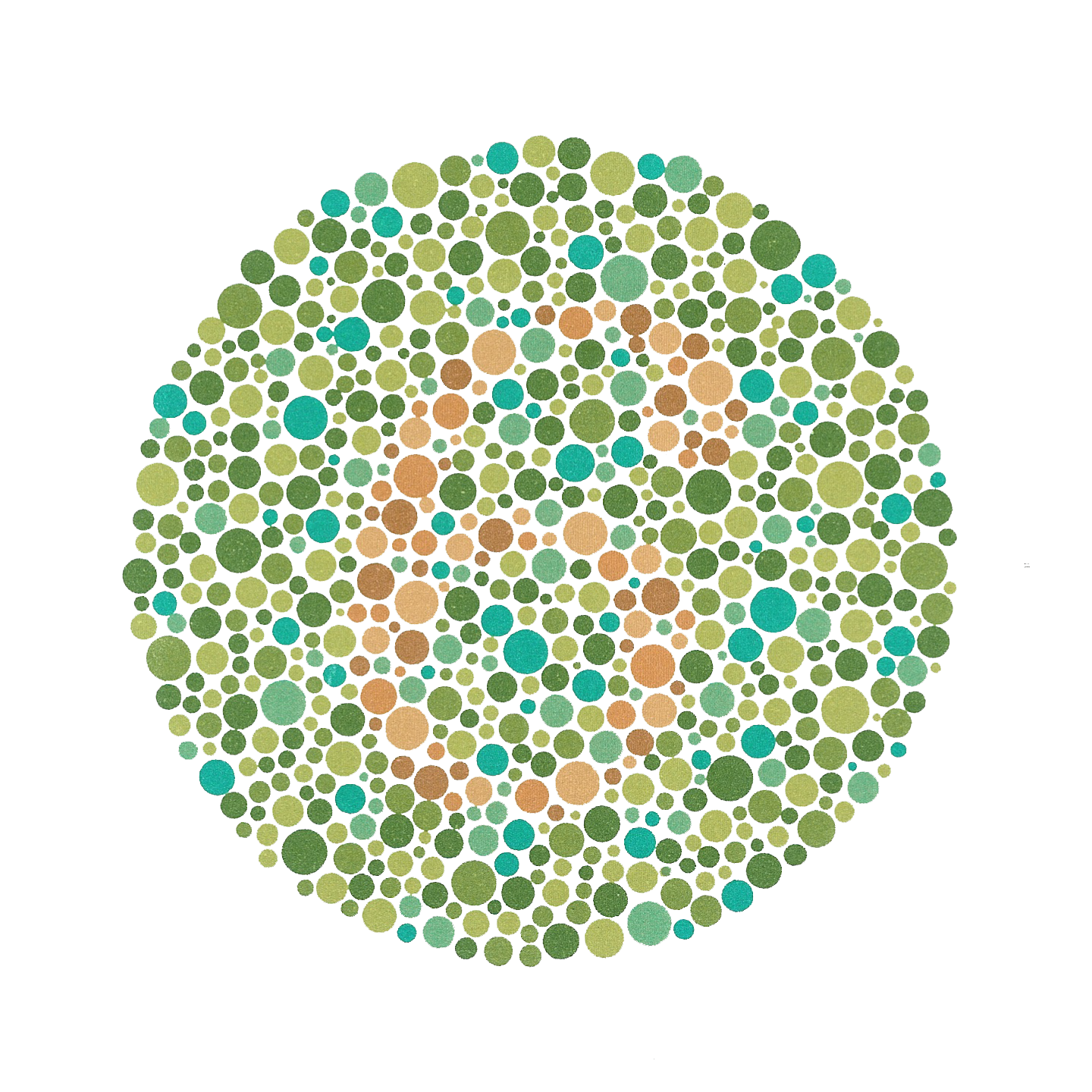 Students interview me about my color-blindness | The Science Slug